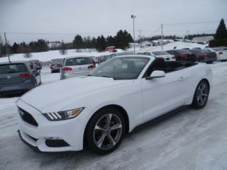 Used 2016 Ford Mustang V6 for sale in East broughton, QC