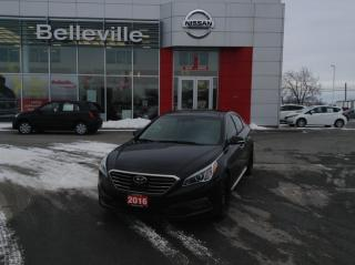 Used 2016 Hyundai Sonata 2.4L Limited 1 OWNER LOCAL TRADE for sale in Belleville, ON