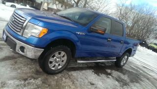 Used 2010 Ford F-150 XLT for sale in Cambridge, ON