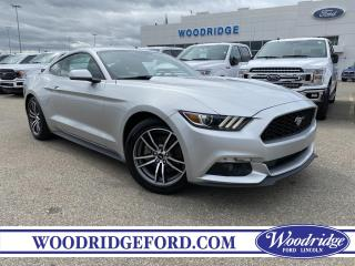 Used 2017 Ford Mustang EcoBoost ***PRICE REDUCED*** 2.3L ECOBOOST, CLOTH SEATS, BACK UP CAMERA, NO ACCIDENTS for sale in Calgary, AB