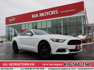Used 2017 Ford Mustang V6 | CLEAN CARFAX | 6 SPD M/T | B/U CAM | 49,985 K for sale in Georgetown, ON