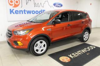 Used 2019 Ford Escape 3 MONTH DEFERRAL! *oac | SE | FWD | Back up Camera | LOW KM for sale in Edmonton, AB