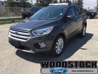 New 2019 Ford Escape SEL FWD  - Sunroof for sale in Woodstock, ON