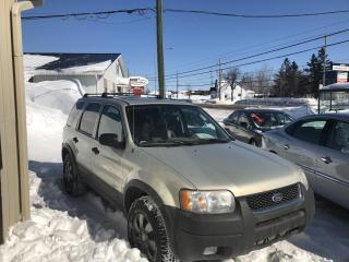 Used 2004 Ford Escape 4 portes XLT Duratec 4 RM for sale in Lévis, QC