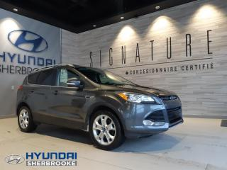 Used 2015 Ford Escape TITANIUM+AWD+CUIR+GPS+TOIT PANO+CAMERA for sale in Sherbrooke, QC