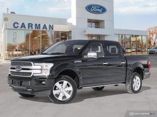 New 2019 Ford F-150 for sale in Carman, MB