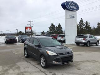 Used 2015 Ford Escape SE | FWD | One Owner | Bluetooth for sale in Harriston, ON