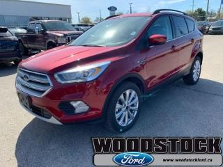 New 2019 Ford Escape SEL 4WD  - Sunroof for sale in Woodstock, ON