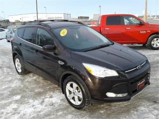 Used 2013 Ford Escape SE for sale in Oak Bluff, MB