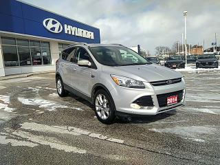 Used 2014 Ford Escape Titanium for sale in Owen Sound, ON