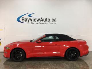 Used 2018 Ford Mustang EcoBoost Premium - LTHR! NAV! RED RAG TOP! RACING STRIPES! for sale in Belleville, ON