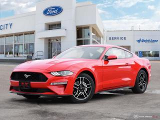 New 2019 Ford Mustang EcoBoost Premium for sale in Winnipeg, MB