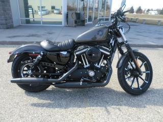 New 2019 Harley-Davidson XL883 IRON XL883N for sale in Blenheim, ON