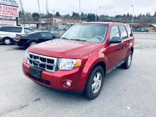 Used 2009 Ford Escape 4WD 4DR V6 AUTO XLT for sale in Surrey, BC