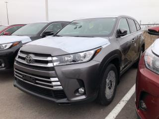 Used 2019 Toyota Highlander XLE for sale in Pickering, ON