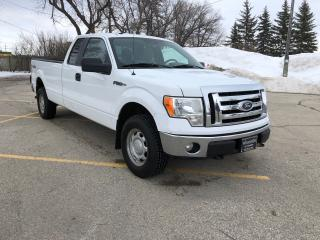 Used 2010 Ford F-150 XLT One Owner / Low KM / New Tires 4x4! for sale in Winnipeg, MB