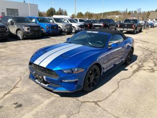 Used 2018 Ford Mustang EcoBoost Premium Convertible Rental, Great Price Great Fun for sale in Orangeville, ON
