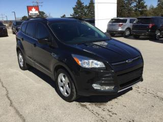 Used 2015 Ford Escape SE   4WD   One Owner   Navigation for sale in Harriston, ON