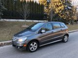 Photo of Gray 2010 Mercedes-Benz B-Class