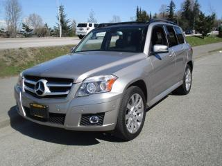 Used 2010 Mercedes-Benz GLK-Class GLK 350 for sale in Surrey, BC