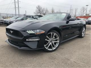 Used 2018 Ford Mustang CNV Ecoboost| Leather| Navigation |Htd/Cooled Seat for sale in St Catharines, ON