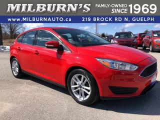 Used 2015 Ford Focus SE for sale in Guelph, ON