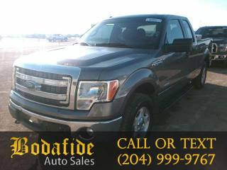 Used 2014 Ford F-150 XLT for sale in Headingley, MB