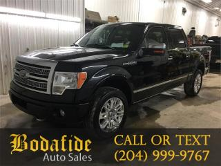Used 2009 Ford F-150 PLATINUM for sale in Headingley, MB