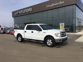 Used 2014 Ford F-150 for sale in Lloydminster, SK
