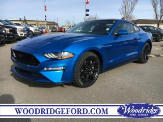 New 2019 Ford Mustang GT for sale in Calgary, AB
