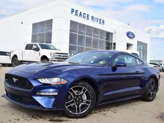 New 2019 Ford Mustang EcoBoost 2dr RWD Fastback for sale in Peace River, AB