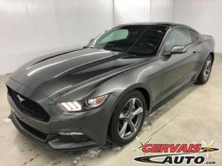 Used 2017 Ford Mustang Ecoboost 310hp Mags for sale in Trois-Rivières, QC