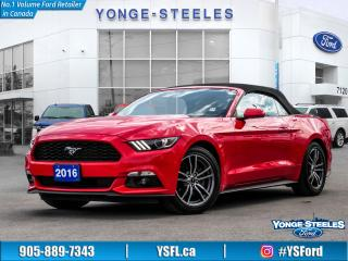 Used 2016 Ford Mustang EcoBoost Premium for sale in Thornhill, ON