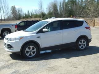 Used 2016 Ford Escape SE for sale in Fenelon Falls, ON