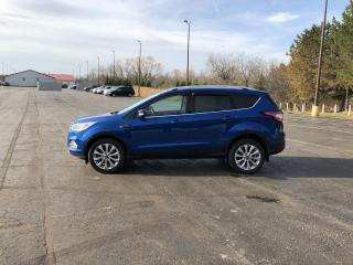 Used 2017 Ford Escape Titanium 4WD for sale in Cayuga, ON