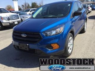 New 2019 Ford Escape S FWD  -  Bluetooth -  SYNC for sale in Woodstock, ON