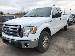 Used 2011 Ford F-150 XLT for sale in Pickering, ON