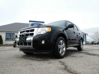 Used 2012 Ford Escape Limited- NAV- REMOTE START- BACKUP CAM- LOADED for sale in Essex, ON