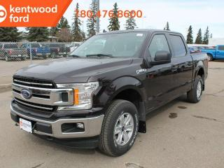 New 2019 Ford F-150 XLT 300A 2.7L 4x4 ecoboost supercrew, auto start/stop, pre-collision assist, remote keyless entry for sale in Edmonton, AB