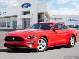 New 2019 Ford Mustang EcoBoost for sale in Winnipeg, MB