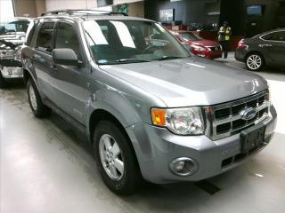 Used 2008 Ford Escape XLT for sale in Brampton, ON