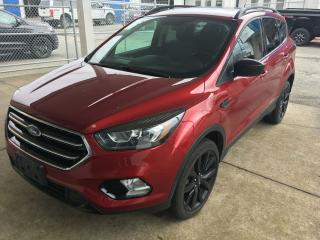 Used 2017 Ford Escape SE for sale in Campbell River, BC