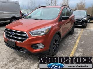 New 2019 Ford Escape SE FWD  - Navigation - Roof Side Rails for sale in Woodstock, ON