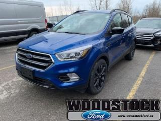 New 2019 Ford Escape SE FWD  - Roof Side Rails for sale in Woodstock, ON