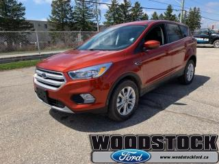 New 2019 Ford Escape SE FWD  - Navigation for sale in Woodstock, ON