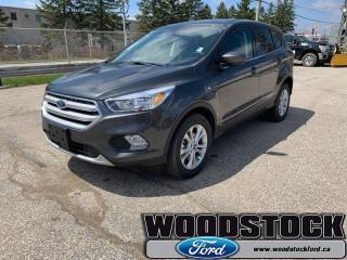New 2019 Ford Escape SE 4WD  - Navigation for sale in Woodstock, ON