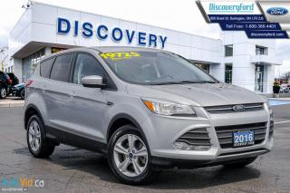 Used 2016 Ford Escape SE for sale in Burlington, ON