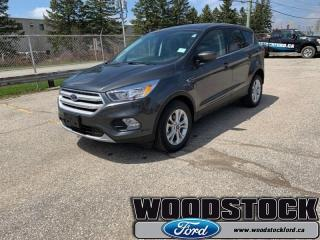 New 2019 Ford Escape SE FWD  - Heated Seats for sale in Woodstock, ON