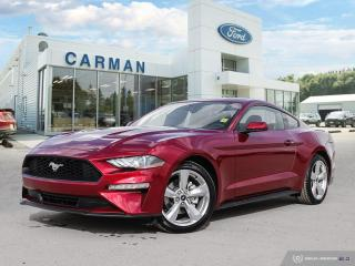 New 2019 Ford Mustang EcoBoost for sale in Carman, MB