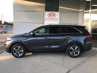 Used 2019 Kia Sorento EX Premium for sale in Kitchener, ON